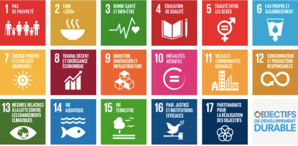 objectifs et axes de transition de l'ONU