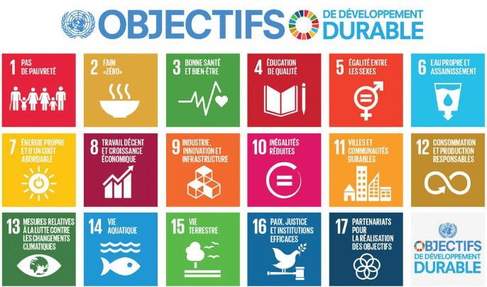 ONU développement durable